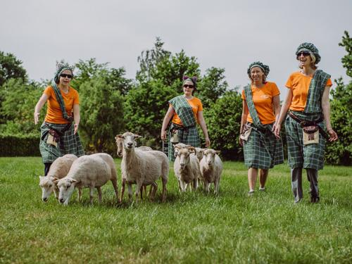 Boek 50+ Highland Games